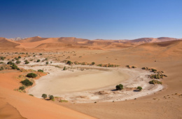 Skeleton Coast Safari combined with Sossusvlei