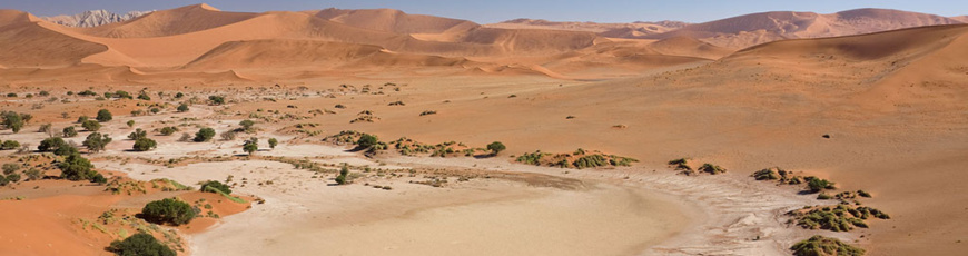(English) Skeleton Coast Safari combined with Sossusvlei